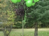Our WillBilly Tree on Will\'s 13th Birthday